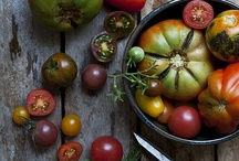 Tomatoes / by Produce to the People Tasmania
