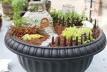 Fairy Garden Ideas - Wilson Made / Fairy Gardens that we have made past and present