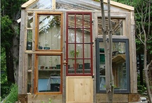 Greenhouse love / by Produce to the People Tasmania