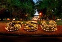 Georgia Southern University / I went to college at GSU in Statesboro, Georgia / by Holly McCaig