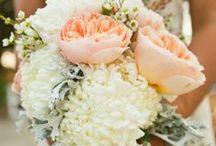 My Pretend Wedding - October / pretend wedding