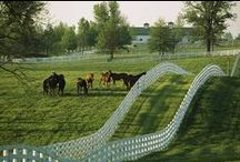 Kentucky / Beautiful countryside, unique shopping areas, tourist attractions, rivers, lakes, and Kentucky Derby