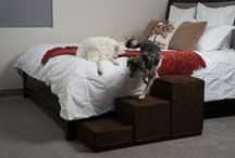 Royal Ramps: Pet Stairs / Does your pet need a little extra help getting to tall places? Choose the finest pet ramps and pet stairs made in the united states. visit royalramps.com – Top quality, comfort, and convenience for your pet. - royalramps.com