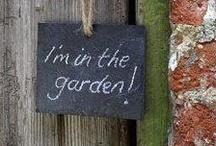 In the Garden / by Rain Marian
