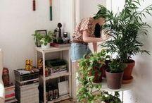 Maison Douce Maison / Home / house / decor / interior / déco / maison / tiles / carreaux / couleur / peinture / bois / meuble /