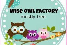 Owl Theme / Owl craziness  / by Missy Leonard