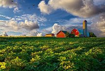 ~ Farm Home ~ / by Ada Bjorklund-Moore