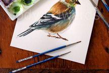 ~ Hobbies, Arts & Crafts ~ / by Ada Bjorklund-Moore