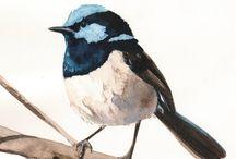 Bird by Bird / by Lauren Terp