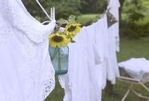 *Sunkissed Laundry ☀  / by ✿⊱╮Cheryl ✿⊱╮