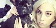 ⭐ Queen Gaga ⭐