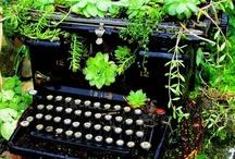 Gardening / by Bonnie