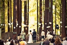 Green Your I-Do's! / Ideas for an eco-friendly wedding, organic wedding tips, recycled bride ideas & more.  #greenwedding