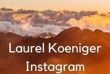 Laurels Instagram