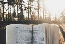 Ausblick / Über den Tellerrand schauen, oder auch über das Buch schauen. Das eröffnet oft wunderbare Ausblicke und Ansichten.