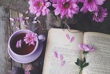 Blumen / Eine schöne Blume, zusammen mit einem Buch oder einem Laden.