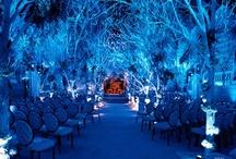 wedding / by Stacy Therrien Sebastino
