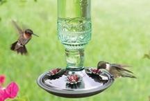 For the Birds / It's about helping the birds where we can.  Bird Houses, Bird Baths, Bird Feeders, Bird Seed... / by Tarryn Austin