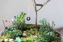Container Gardens  / Sometimes you don't want to plant it in the ground.  Sometimes a container is what you need.  Ideas for growing plants in containers.  Veggies, flowers, for the birds, bugs, and fairies.   / by Tarryn Austin