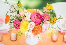 Flowers / by Hayley Mann