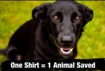 Help Save an Animal / We believe what matters most is what you do to help others.  You want to do something that matters?  We made it easy to help.  One shirt = one animal saved, one month of education, one year of clean water or three trees planted.  And the shirt is pretty rad, too.  http://cause.thisshirthelps.com/