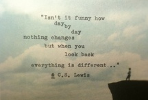 Quotes & Such  / There's a quote for everyone..