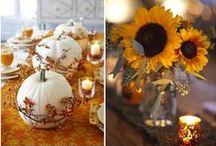 Wedding stuff / by Jen Schwab