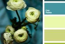zestawienia kolorów
