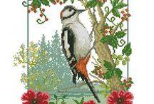 haft - ptaki 2 - różne