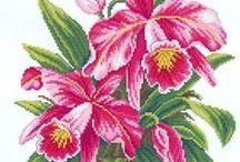 haft - kwiaty - storczyki