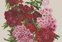 haft - kwiaty - goździki, floksy