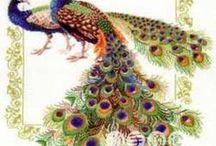 haft - ptaki - pawie