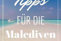 Malediven Urlaub günstig / Einmal im Leben auf die Malediven. Den Traum hat bestimmt jeder von uns. Wie du günstig Urlaub auf den Malediven machen kannst, in diesem Board.