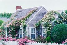 Garden & landscaping / by Rebecca Joseph