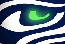 Sports/. SEAHAWKS!!!!!!!! Baby / Seahawks / by Roxanne Mattern
