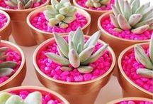 Craft Garden / Quando a arte encontra as flores...