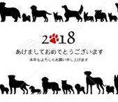 年賀状2018