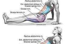 Exercícios para um ABDÔMEN FORTE / #exercício #treino #abdomen #abdominal #core