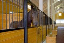 Deviere Farm / A private horse training and breeding facility. A post framed horse barn is connected to a 70' x 146' steel indoor arena created a tee shaped building. The barn has nine stalls, wash/groom stalls, office, and support spaces on the first floor and a laboratory and storage areas on the second floor. The office and laboratory have windows into the indoor horse riding arena design. The riding arena is day lit from roll-up glass garage doors, translucent panel clerestories, and a translucent gable.
