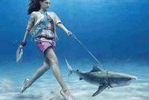 Víz alatt - Underwater
