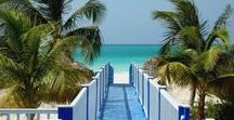 Live & Work Overseas / Destination guides for professionals wishing to relocate