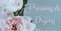 Pressing & Drying Flowers / How to keep your flowers though the years. I find drying to be the easiest way! #driedflowers #techniques #dryflowers #preserveflowers