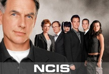Favorite TV Shows / by Judi Mark
