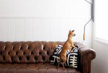 Beautiful Homes & Animals / For you animal lovers!