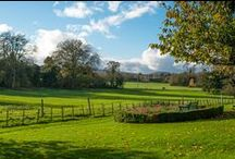 Visit Wiltshire / Wonderful places, sights and businesses in Wiltshire, UK.