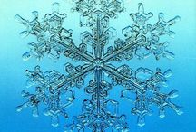 Snowflakes-amazing macro photography / How do they catch these shots? Just amazing! God's beauty for sure! How do we know no two are alike? / by Marcia Packard Kenney
