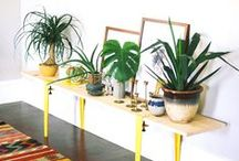 Indoor Greenery / Style your space for spring and summer with some indoor greenery, whether it's real or fake! Both can look incredibly stylish and add some nature to any room.