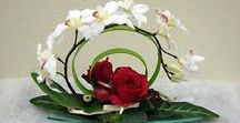 flowers + arrangement