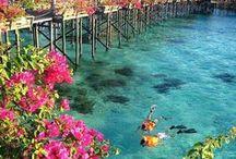 Bora Bora, Tahiti,French Poly...