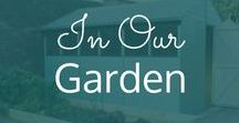 In Our Garden / Tips, ideas and photos of our garden. General posts about our English garden.